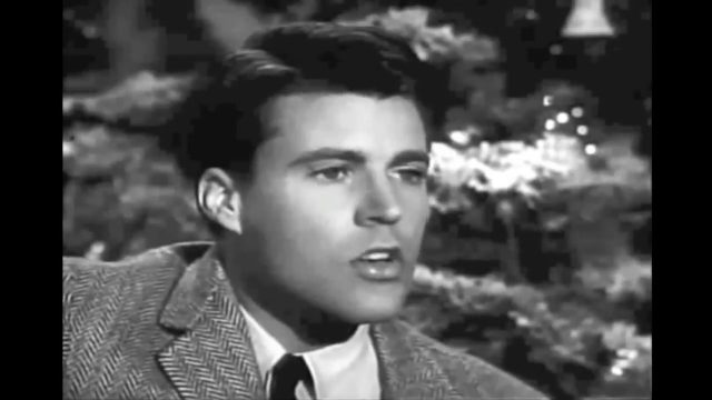 The Christmas Song | Ricky Nelson